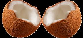 de cocos y estructuras